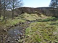 The River East Allen above Peasmeadows - geograph.org.uk - 1335867.jpg