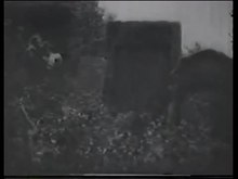 Datei:The Student of Prague (1913).webm