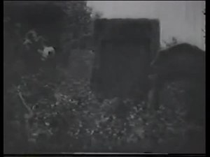 Archivo:The Student of Prague (1913).webm