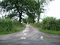 The road to Little Westfield - geograph.org.uk - 485339.jpg