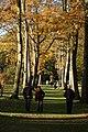 Thorp Perrow Arboretum - geograph.org.uk - 748534.jpg