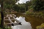 Tiang Sabah Fish-aquaculture-01.jpg