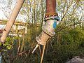 Tijdelijke pijpleidingbrug over de Tramwei in Broek bij Joure 10.jpg