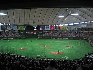 2006 World Baseball Classic - Image: Tokyo Dome Giants Fighters
