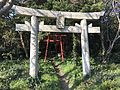 Torii of Iwamiya Shrine on Ainoshima Island.jpg