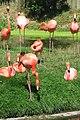 Toronto Zoo IMG 1089 (194431233).jpg