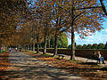 Toscana Lucca1 tango7174.jpg