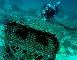 Fish trap - Traditional trap in East Timor