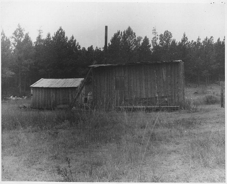File trespassers cabin black hills national forest south for Cabine black hills south dakota
