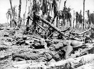 Battle of Wakde - American troops advancing on a coconut plantation