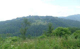 Trstena (Vranje) Village in Pčinja District, Serbia