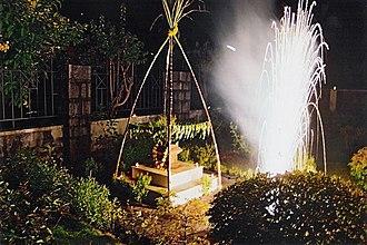 Tulsi Vivah - Tulsi plant worshipped as part of Tulsi Vivah celebrations.