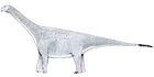 Turiasaurus riodevnesis
