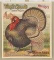 Turkey brand molasses. Bryan Bro's. New Orleans LCCN2003667058.tif