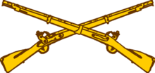 USA - Army Infantry Insignia.png