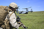 US Marine Ospreys Perform Long-Range Raid 140411-M-MF313-427.jpg