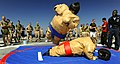 US Navy 090525-N-5345W-088 Service members aboard the amphibious dock landing ship USS Fort McHenry (LSD 43) wrestle in sumo suits on the flight deck of the amphibious dock landing ship USS Fort McHenry (LSD 43) during a steel.jpg