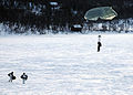 US Navy 100223-N-8949D-130 U.S. Navy SEALs and German forces freefall parachute onto a frozen a lake in Northern Norway during Exercise Cold Response 2010.jpg