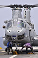 US Navy 110706-N-GW695-079 Airmen remove chocks and tie-down chains from a CH-46 Sea Knight helicopter.jpg