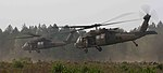 Uhlan Fury, Bilateral exercise continues in Lithuania 150812-A-FJ979-001.jpg