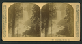 Vernal Falls, 630 feet. Cal, by Littleton View Co. 5.png