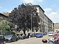 Via Caradosso, Milan, May 2018 (02).jpg