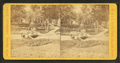 View in Harmony Grove, by J.W. & J.S. Moulton.png