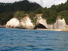 View of Cathedral Cove From Reserve.JPG