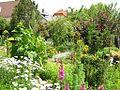 Virágok és háztetők - Flowers and roofs - panoramio.jpg