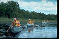 Voyageurs National Park VOYA9520.jpg