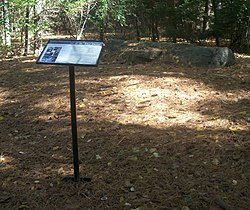 "An informational plaque with ""Boulder Dedicated to the Legacy of W.E.B. Du Bois"" headlining text and pictures in the front on a slender black stand to the right. It stands in a clearing in a wooded area covered in orange downed pine needles; to its rear, on a small rise, is the boulder referred to on the plaque."
