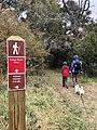 WW Hike.jpg
