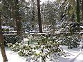 Waldfriedhof Dahlem2 Berlin.JPG