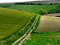 Walkers on The Wolds Way - geograph.org.uk - 182419.jpg
