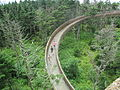 Walkway to Clingmans Dome, TN IMG 4941.JPG
