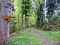 Wanderweg nach Bad Liebenzell - panoramio.jpg