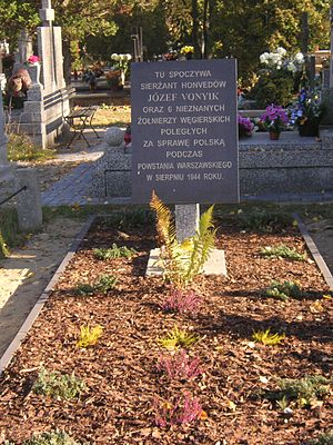Pole and Hungarian cousins be - Grave of a Hungarian Honved captain and six of his men who fell fighting on the Polish side in the 1944 Warsaw Uprising.