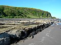 Wave-Cut Platform At Bracken Bay - geograph.org.uk - 1306232.jpg