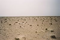 Western Sahara desert 1