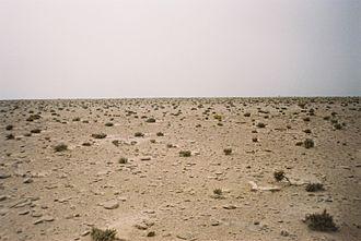 Sanmao (author) - Western Sahara desert 1