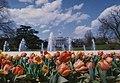 White House Spring 1975 H.jpg