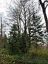 foto van Buitenplaats Cartils: houten tuinhuisje