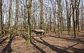 Wildgehege - panoramio (1).jpg