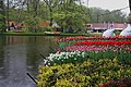 Wiosenny ogród Keukenhof w Lisse-Holandia. - panoramio (15).jpg