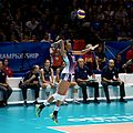 Women's World Volleyball Championship, 2014 (15448596317).jpg