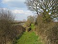 Wooden footbridge near Quainton - geograph.org.uk - 377513.jpg