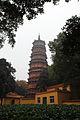 Wuhan Hongshan Baota 2012.11.21 12-00-38.jpg