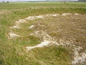 Henge - Excavated henge ditch on Wyke Down (Dorset). The ditch was originally dug as Causewayed enclosure and may therefore not be a henge.