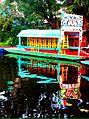 Xochimilco, México..jpg