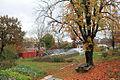 Yale Farm in the autumn.jpg